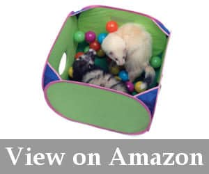 best ferret playpen reviews