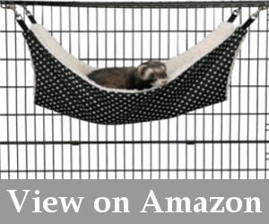 ferret toys for cage reviews