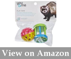 household ferret toys reviews