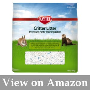 litter training your ferret reviews