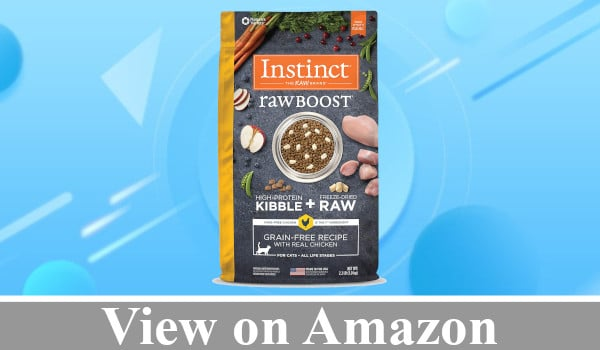 Instinct Raw Boost Recipe Dry Cat Food review