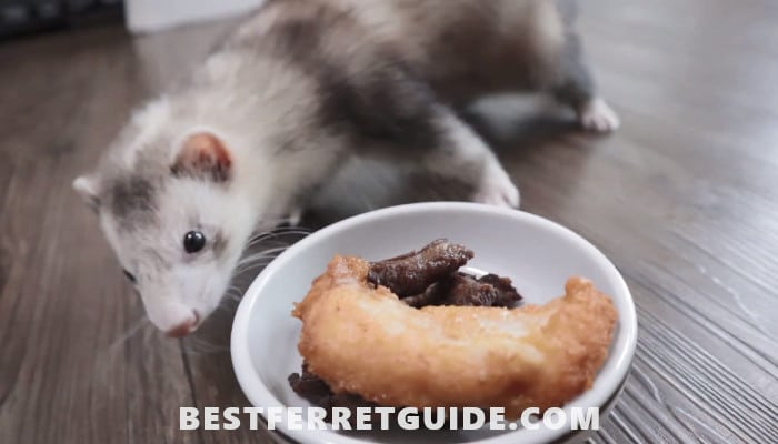 How to Make Homemade Ferret Food